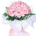 24 fresh pink roses bouquet